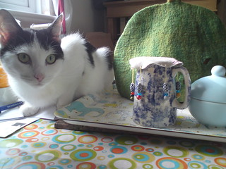 Milk Jug Cover + One Fooled Cat | by Felt Meets Cloth - Abigail Thomas