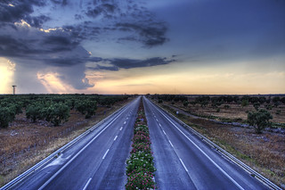 olive motorway - salento, puglia, italy | by Paolo Margari