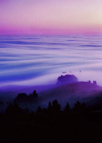 film on mount tam | by caalo10