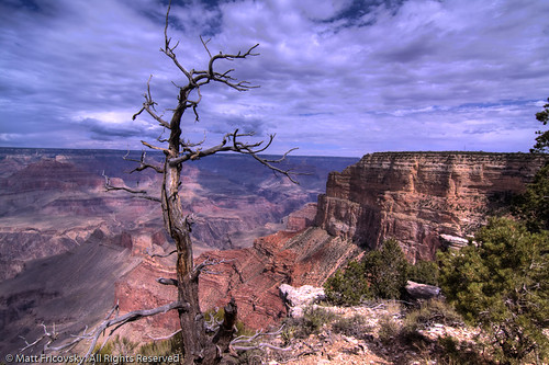 Grand Canyon | by Matt Fricovsky ::: www.mattf.me