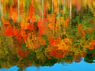 Beautiful Fall Mirror | by Stanley Zimny (Thank You for 27 Million views)