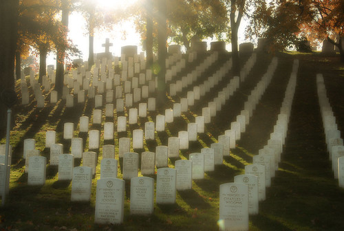 Arlington Cemetary - Veterans Day | by InnocentEyez