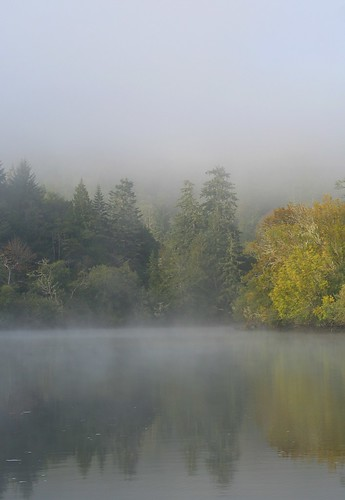 Morning Mist on the River 0084 | by CatDancing
