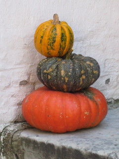 Pumpkins on a Doorstep | by Treetop Mom