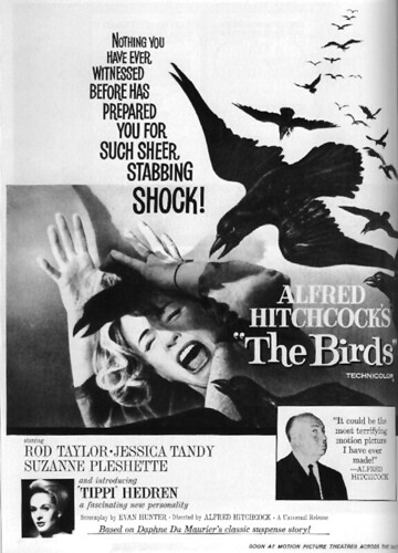Alfred Hitchcock's The Birds | by Dr. Insermini