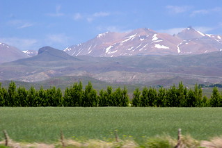 MENDOZA, ARGENTINA: Countryside & The Andes, seen from Route 40. | by thejourney1972 (South America addicted)