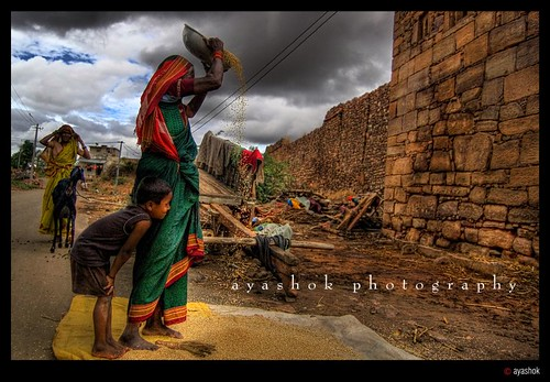After Harvest | by ayashok photography