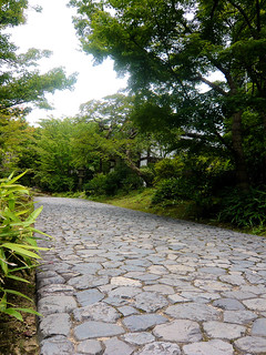 Paved pathway | by DocChewbacca