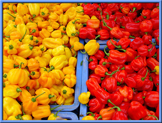 Surinamese peppers | by Daveness_98
