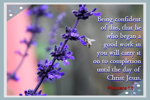 inspirational bible verses philippians 1 6 download this