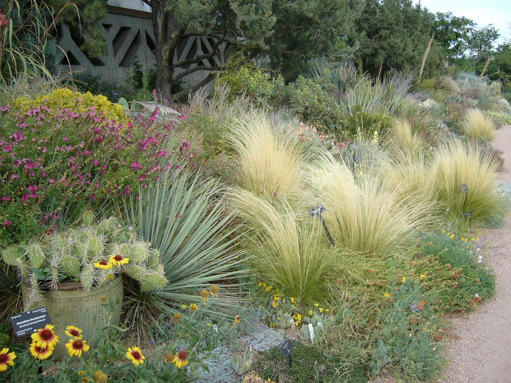 ... Xeriscape   Denver Botanic Gardens | By Pesoptimist