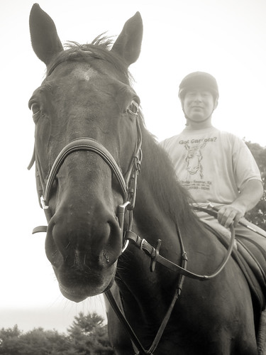 A Horse and His Boy | by eschneider