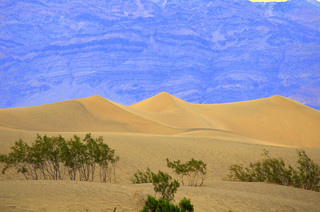 sand dunes in death valley 6-15-2011 4-48-07 AM | by kpc4229