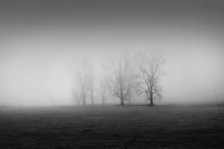 mists | by -justk-