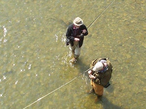 Ontario fly fishing maps hatch charts check out the for Hatch fly fishing