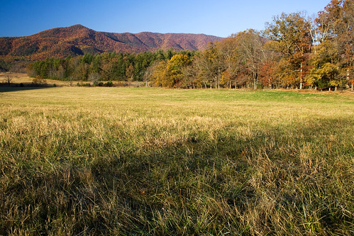 An Autumn Pasture | by Robby Edwards