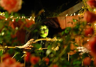 Halloween Witch at Mill Rose Inn, Half Moon Bay, California | by Wonderlane