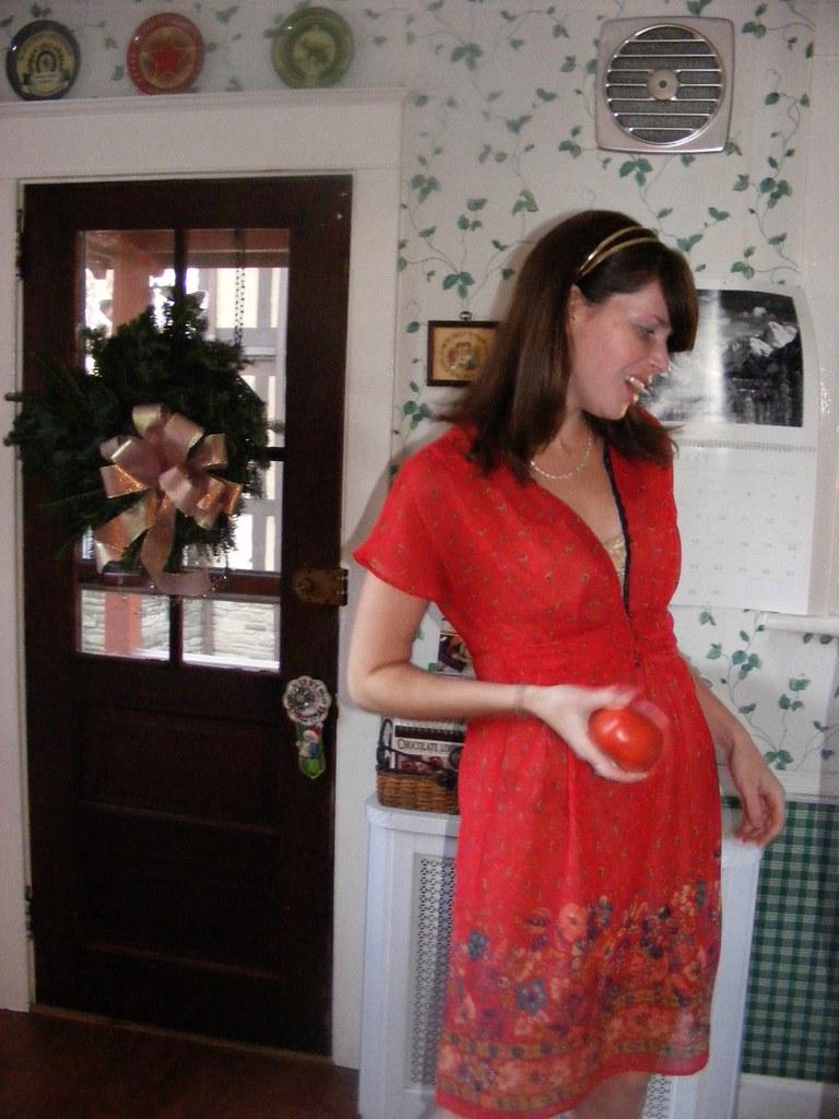 Kellen Elizabeth Zale Flickr Dress By Pleaseplantmyphoto