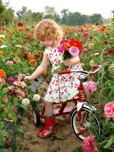 Picking Flowers | by Just Amy.