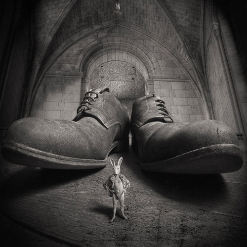 Mad Bunny and the church of the big shoes | by yves.lecoq
