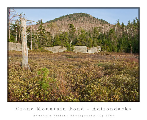 Bog On Inlet Of Crane Mountain Pond | by Mountain Visions