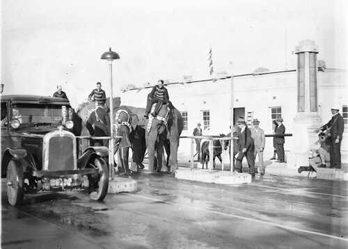 Elephants and a pony at Bridge toll bar, 3 April 1932 / photographed by Sam Hood | by State Library of New South Wales collection
