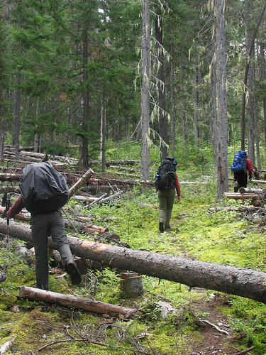 Stein Valley, 1 Sep 2008