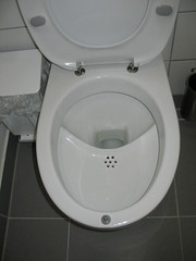 UD flush toilet | by Sustainable sanitation