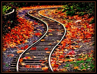 Winding Tracks | by Matthew Gilliam Photography