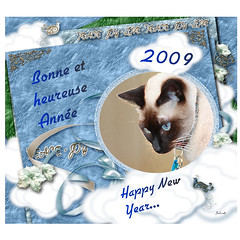 Pour cette nouvelle Année 2009...For all of my friends...Happy New Year!! | by julicath/Cath (On- Off ;-))