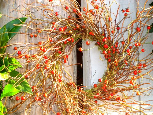 thanksgiving wreath | by Hopeisalot
