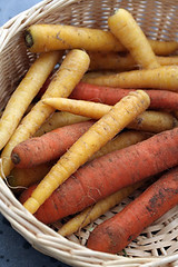 dirty carrots | by David Lebovitz