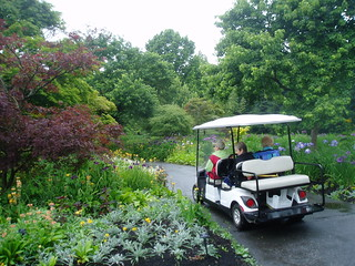Cart Ride to Perennial Gardens | by RHR Horticulture