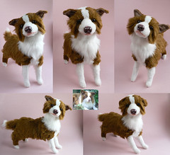 Knitting Pattern For Border Collie Dog : border collie - custom dog plush cornflakegirl Flickr