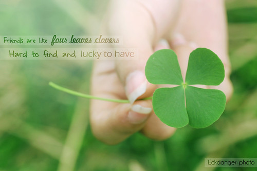 clover (explore ^^) | by Eck Danger