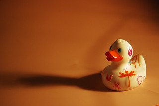 143/365 - Dreaming Duck | by tsukinoblossom