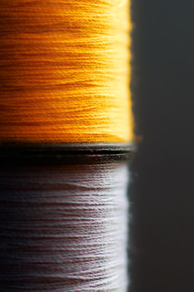 Yellow & Gray Thread | by Chicken Stock
