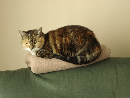 "Auditioning for ""The Princess and the Pea"" 