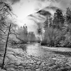 The Elwha River | by wildestseas