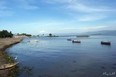 Image Result For Lago De Chapala