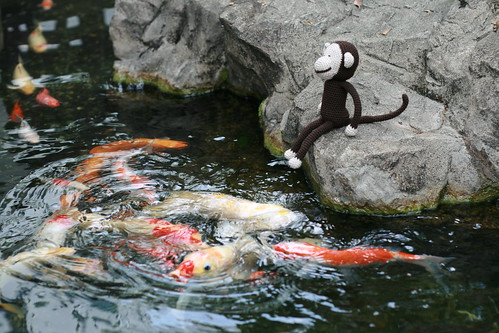 dhoby feeds the fishes | by mintyfreshflavor