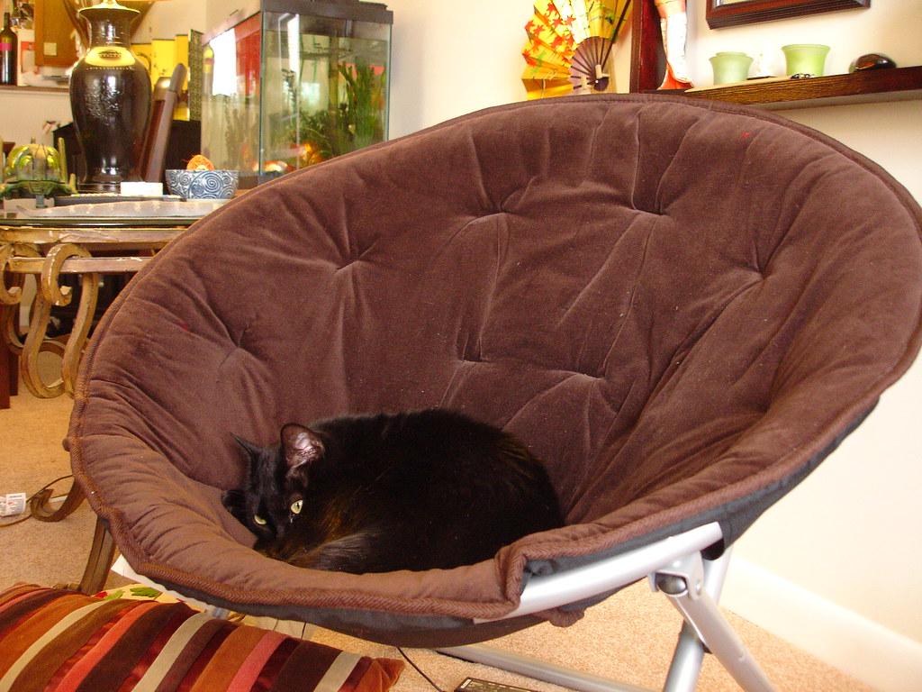 subi in the mushroom chair   redqueen715   flickr