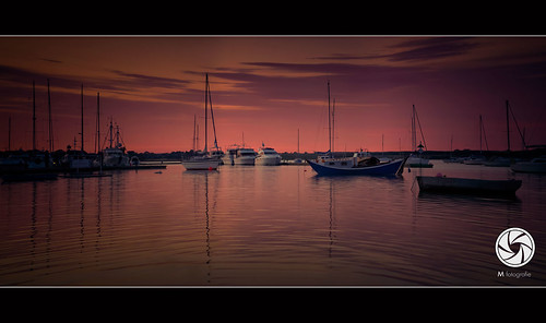 At The Marina | by M Fotografie