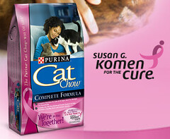 Education About Breast Cancer | by cambodia4kidsorg