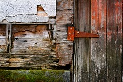 Textured: Mossy Rusty Woody Rocky Moldy | by Lisa Bettany {Mostly Lisa}