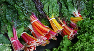 Swiss Chard Rainbow | by eflon