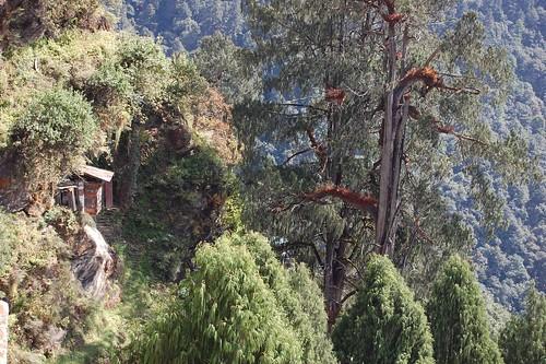Meditation Room Meditation Spot For Hundreds Of Monks Out Flickr
