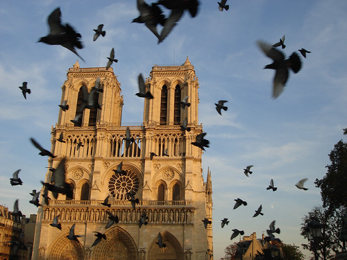 Flight, Notre Dame | by n0wak