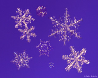 Snowflakes / Flocons de neige ( 1st of 3 ) | by Eric Bégin