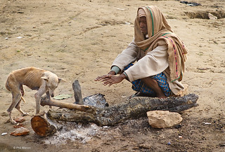 Starving dog huddles against an early morning fire in hopes of keeping warm - Varanasi, India | by Phil Marion